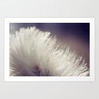 Fluffy white Art Print