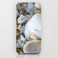 iPhone & iPod Case featuring Shells by ArtsyCanvasGirl Designs