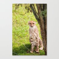 Hey Kitty Canvas Print