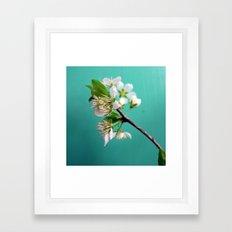 Still Life with Spring Framed Art Print