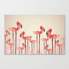 transmogrified flamingo colony Canvas Print