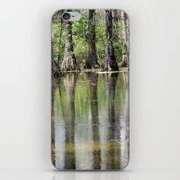 Cypress Mirror iPhone & iPod Skin