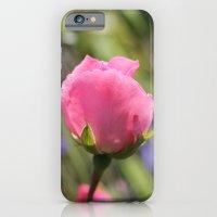 Sweet Rose iPhone 6 Slim Case