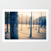 Nami Island Forest Art Print