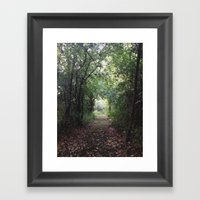 Natures Path Framed Art Print