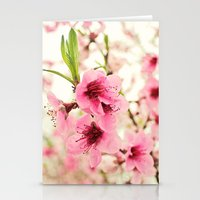 Spring Is In The Air! Stationery Cards