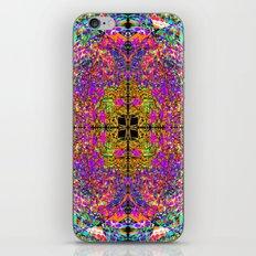 0080 iPhone & iPod Skin