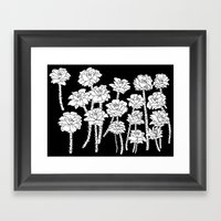 Black And White Roses Framed Art Print