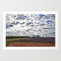 Clouds and Cotton Fields Art Print