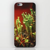 The Troubadours iPhone & iPod Skin