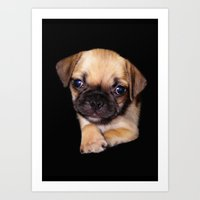 Puggle Art Print