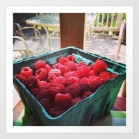 Raspberry Harvest Art Print