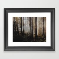 Sunrise Through The Wood… Framed Art Print