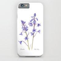 Bluebells iPhone 6 Slim Case