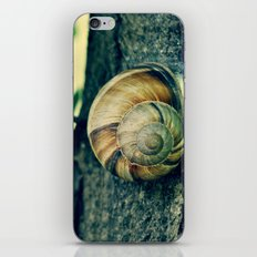 OOLIQUE iPhone & iPod Skin