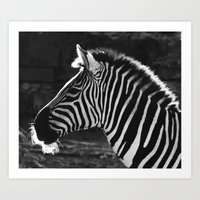 Black And White Art Print