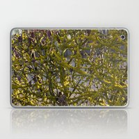 Moss in the Spring Laptop & iPad Skin