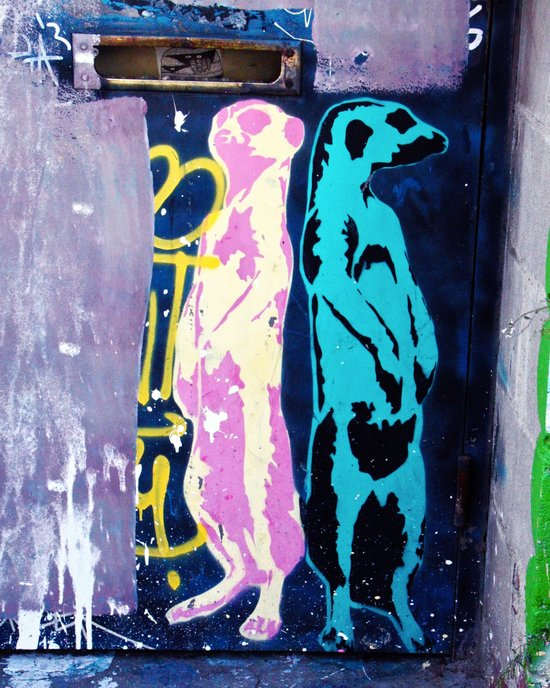 Meerkat Graffiti Art Print