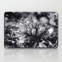 Sunlit Crocus In Black A… iPad Case