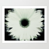 Into the Flower Art Print