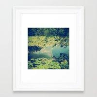 Lily Pad Pond Framed Art Print