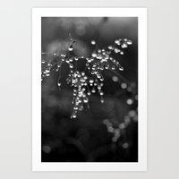 A Moment Of Clarity Art Print