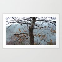 Tree Trunk After A Sprin… Art Print