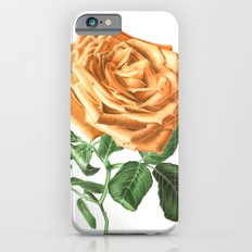 For ever beautiful iPhone 6 Slim Case