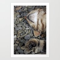 Ecstatic cat Art Print