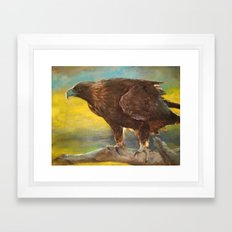 Golden Eagle (Aquila chrysaetos) Framed Art Print
