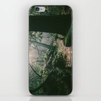 ORCAS ISLAND FOREST iPhone & iPod Skin