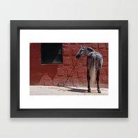 CABALLO ANDALUZ Framed Art Print
