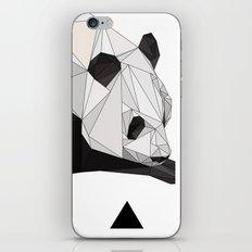 pa iPhone & iPod Skin