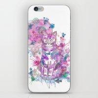 Purple kitten iPhone & iPod Skin