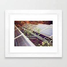 Bee & Sun, Berlin Framed Art Print