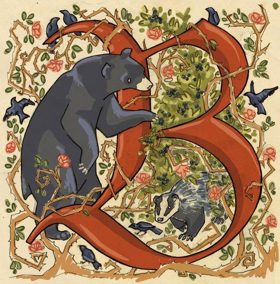 Illustrated Letter B Art Print