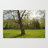 Sefton Park Part 1 Canvas Print