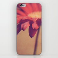Red Daisy iPhone & iPod Skin