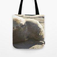 Elephant Seal: Contempla… Tote Bag