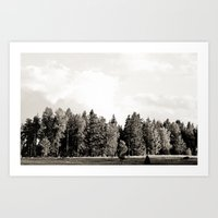 Trees in a line Art Print