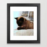 Chessie Cat Framed Art Print