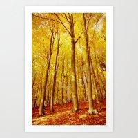 forest colors #1 Art Print