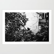 EARLY MORNING, A MESSAGE FOR YOU. Art Print