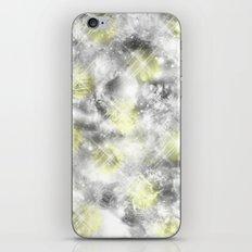 Reflective iPhone & iPod Skin