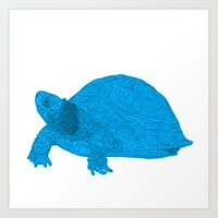 Turtle Illustration Blue Art Print