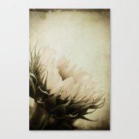 une fleur  Canvas Print