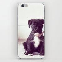 Francine iPhone & iPod Skin