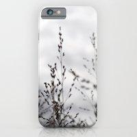 Grey Grasses iPhone 6 Slim Case