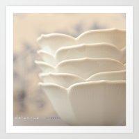 White Petal Bowls Art Print