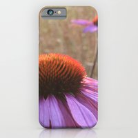 iPhone & iPod Case featuring Echinacea by Philippa Williams